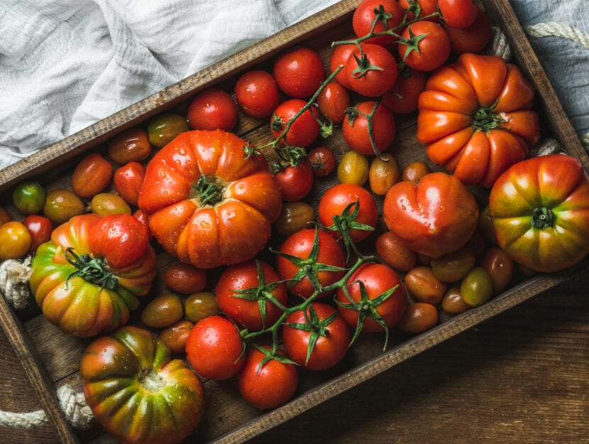ricette con pomodoro fresco