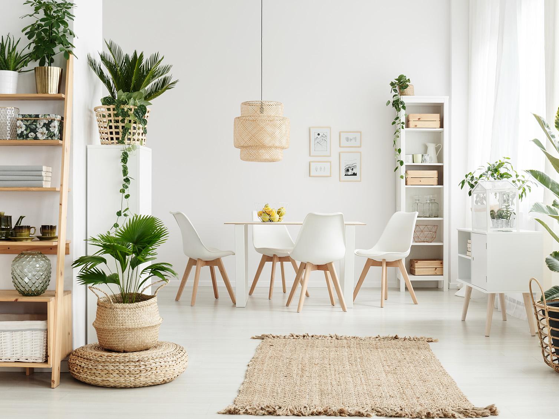 Pianta Da Ufficio Poca Luce vasi per piante da interno di design | tendenze 2020