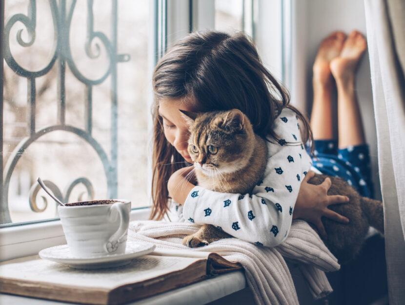 Bambina gatto alla finestra