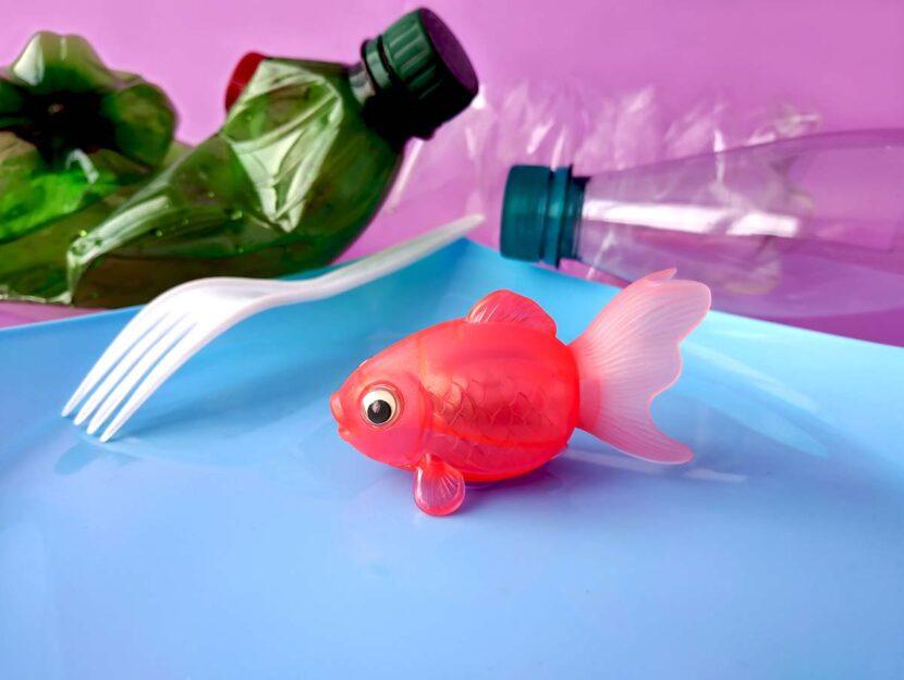 Plastica nel piatto