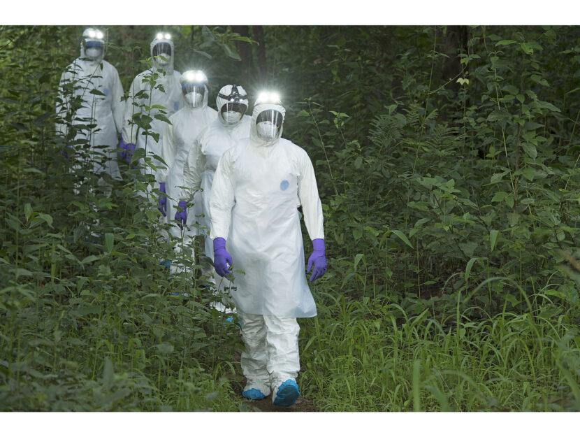 Scienza pandemia