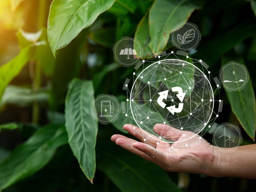 gesti ecologici ecosostenibili