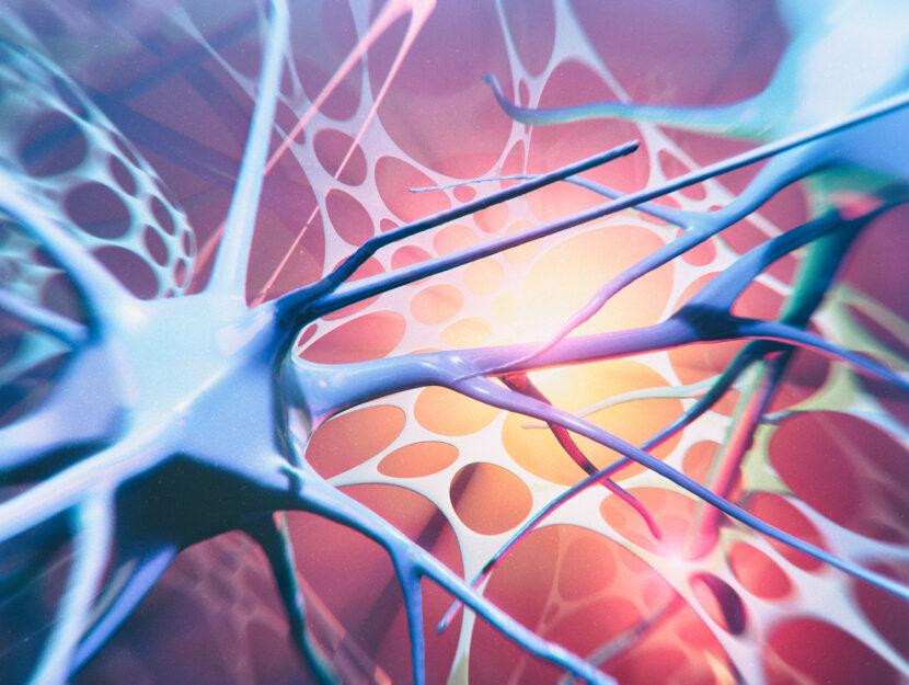 Neuroni - Atrofia muscolare spinale
