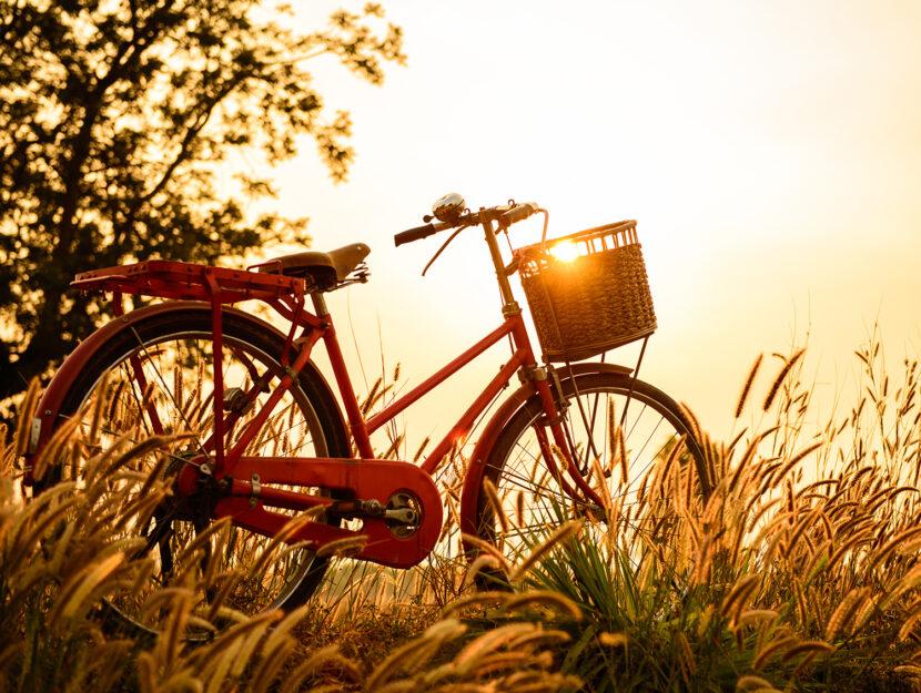 Scegliere la bicicletta da acquistare