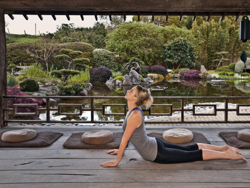 Giardino zen donna esercizi yoga cobra