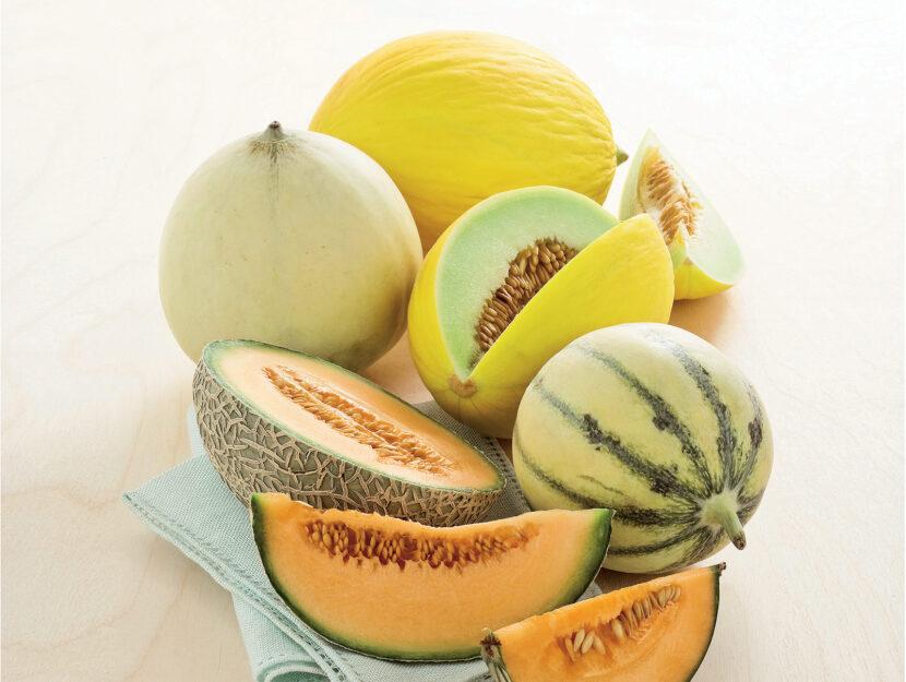 Melone: varietà