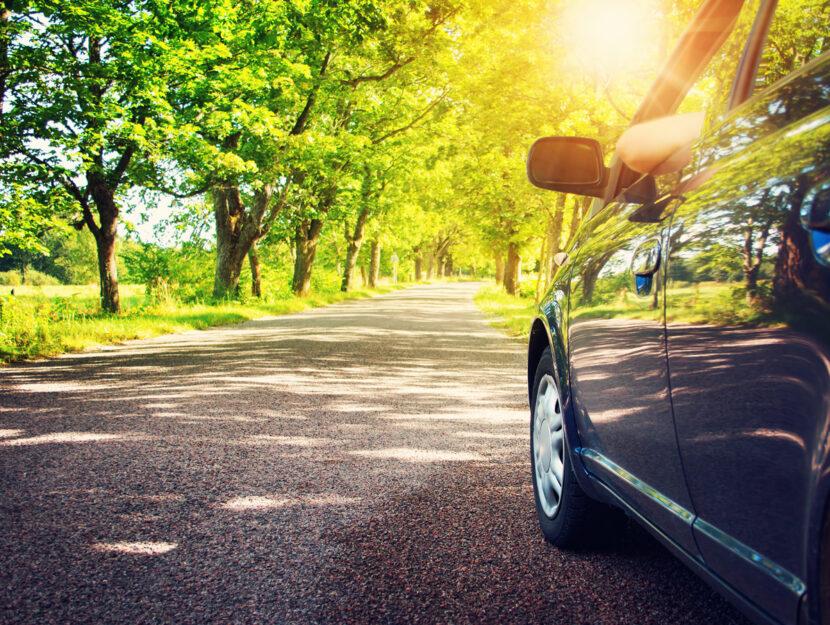 Automobile strada alberi