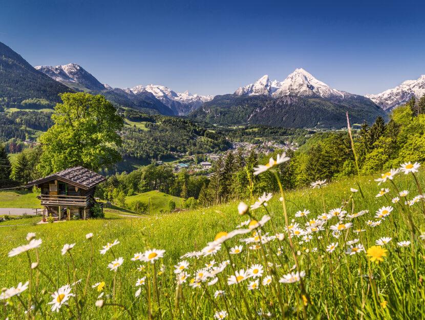 Vacanza in montagna - panorama alpino