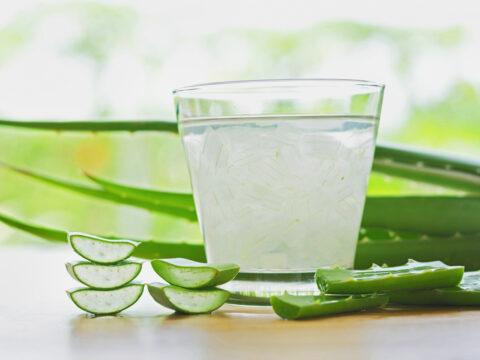 Dimagrire e non solo: il succo di aloe vera è un elisir di benessere