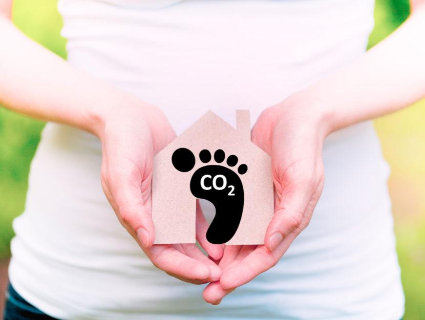 Impronta di carbonio