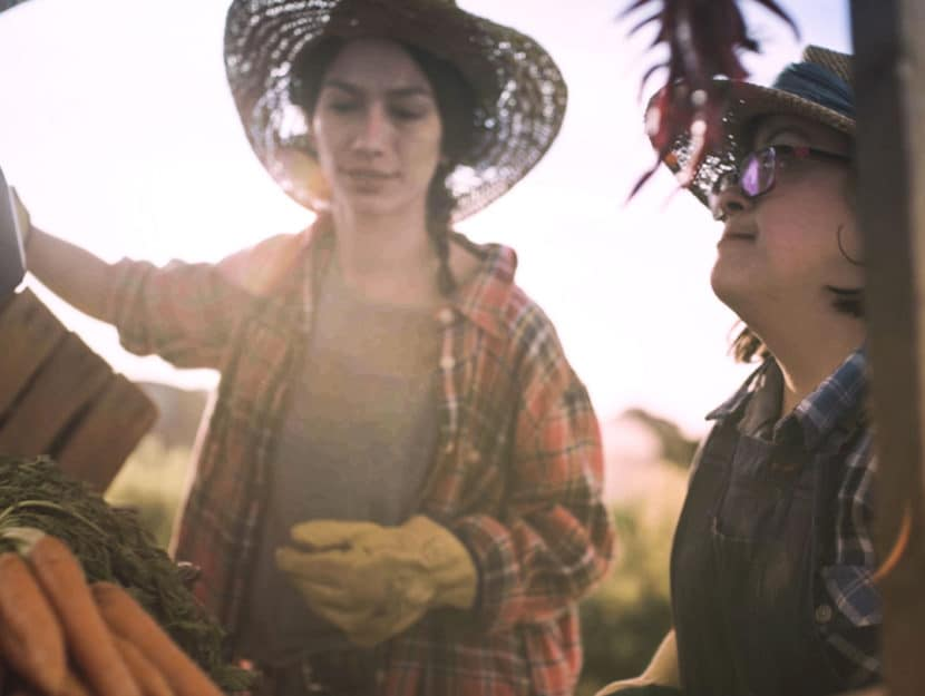 Un'immagine dal video della campagna The hiring chain: