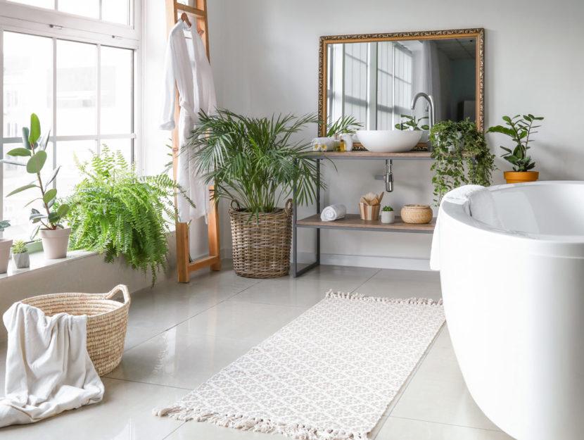 Bagno luminoso con piante