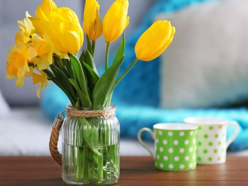 Tulipani e tazze colorate