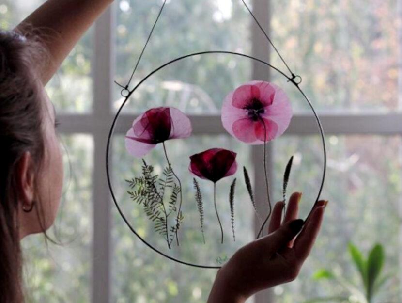 2 erbari trasparenti - Anna Roslynka