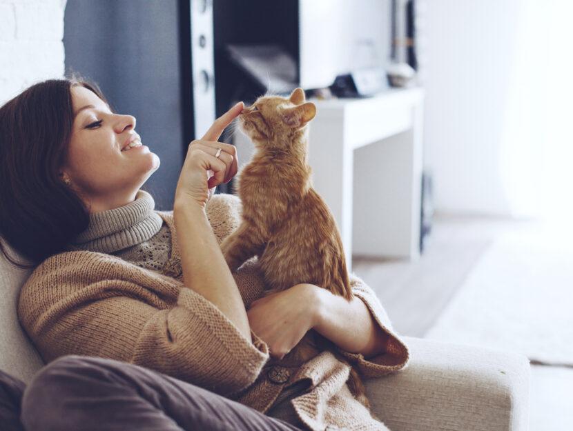 gatti e donne