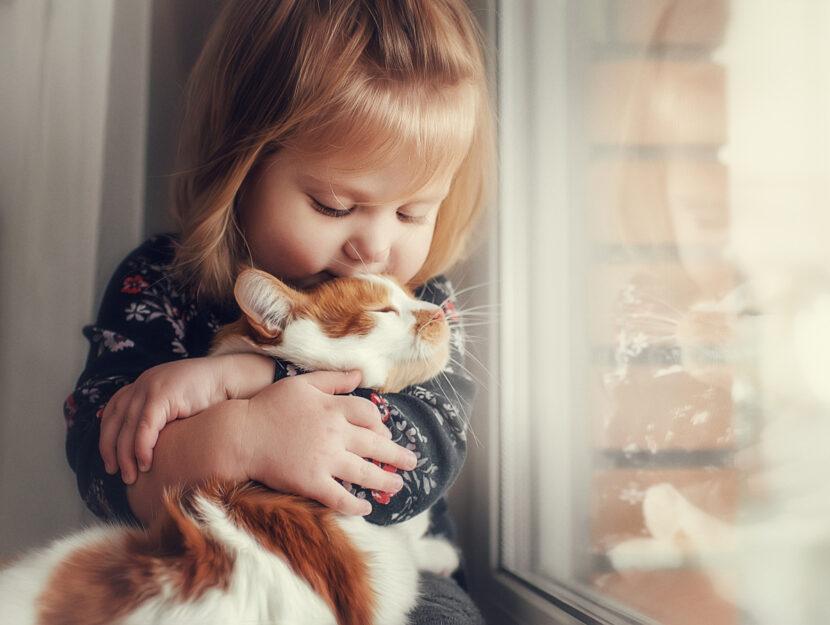 bambini-gatti