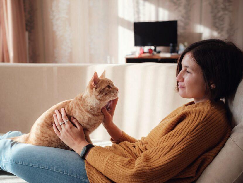 Comportamenti strani del gatto