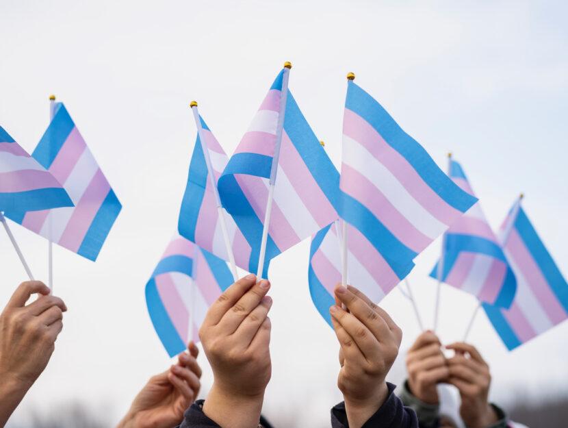 La bandiera per i diritti delle persone trans