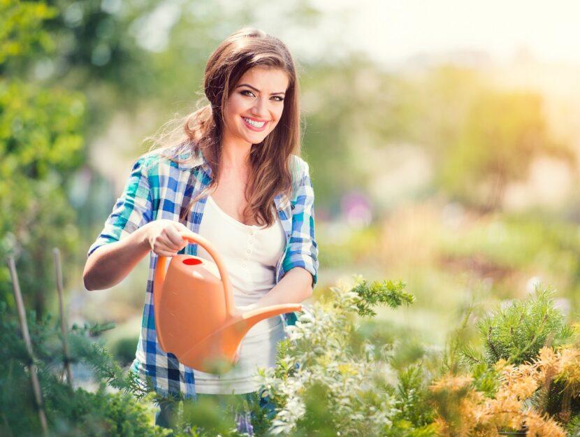 Come rendere colorato e allegro il tuo giardino