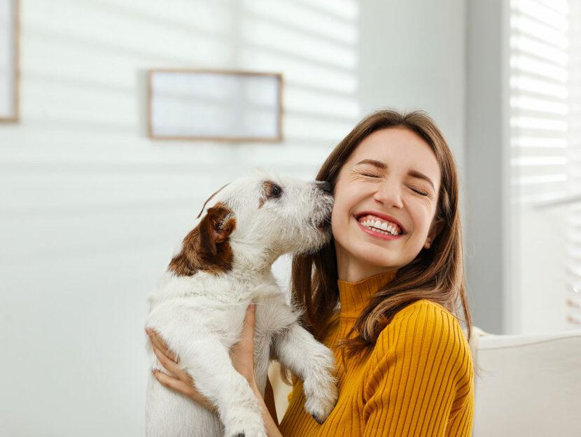 cose che puoi insegnare al tuo cucciolo