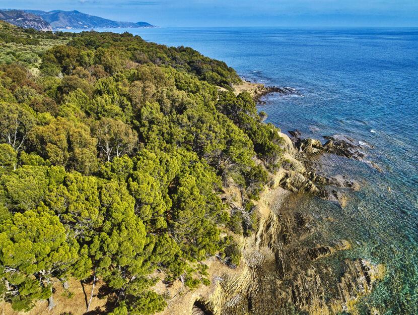 Cilento Campania Punta Licosa