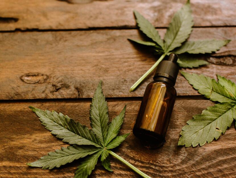 Olio di cannabis foglie
