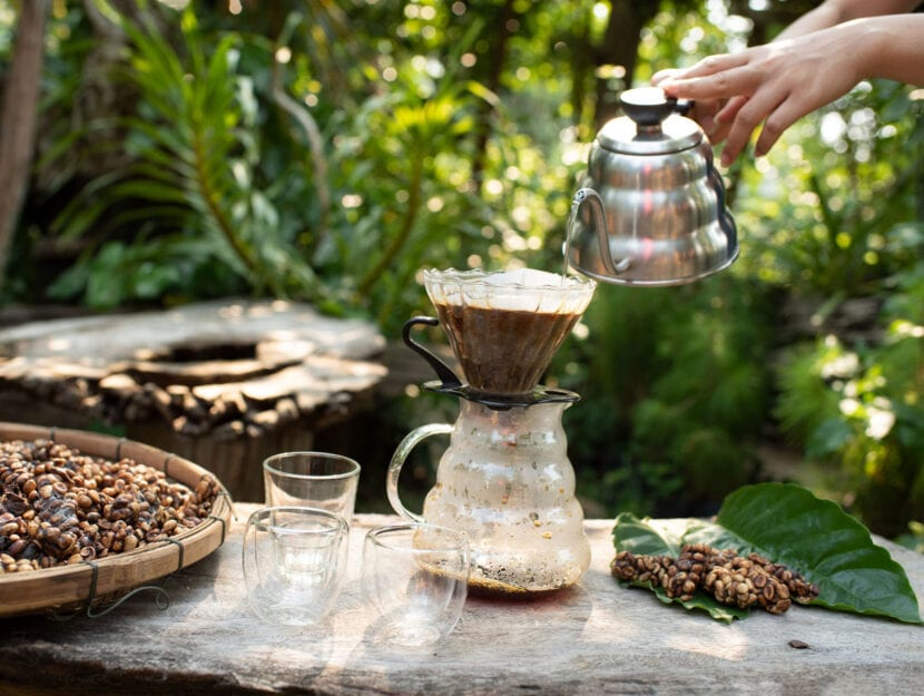 caffè chemex giardino